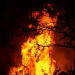 Brand i mindre fristående byggnad Tving