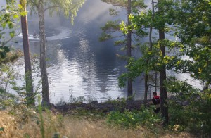 Brand längs Ronnebyån N Långgöl