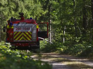 skogsbrand-johannishus002